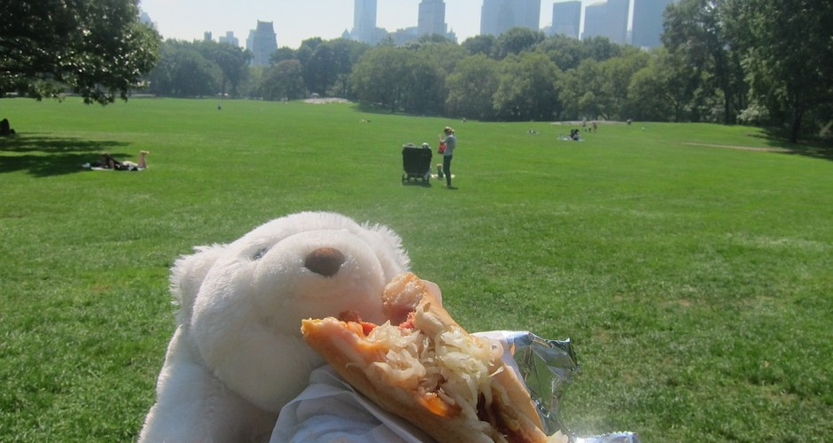 pizza in Central Park