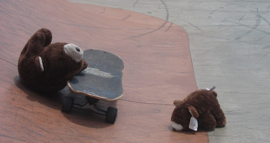 Skateboarder bears I