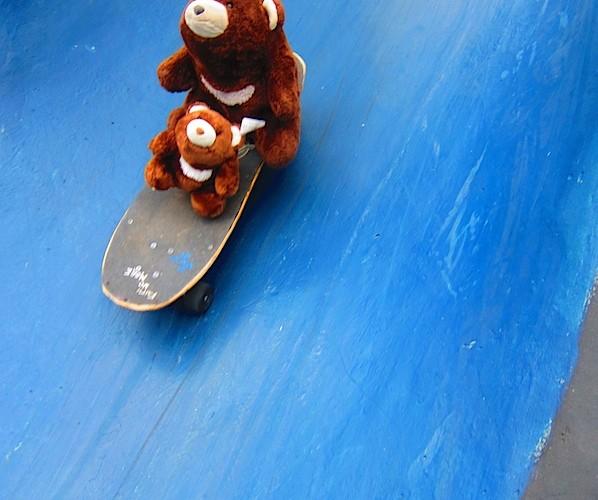 滑板手小熊II