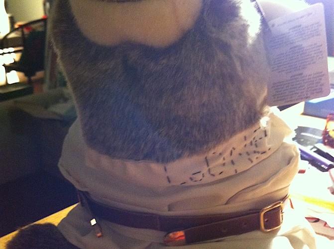 <!--:en-->Loonie�s straight jacket front view  <!--:--><!--:zh-->Loonie ????????  <!--:--><!--:hk-->Loonie ????????<!--:-->