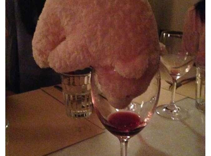 Clumsie drinks wine