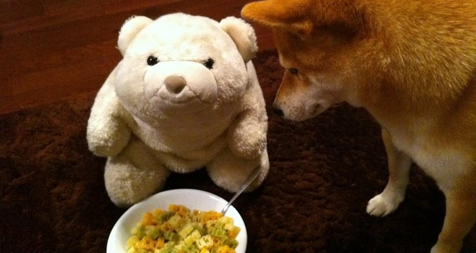 Gourmie's bear pasta