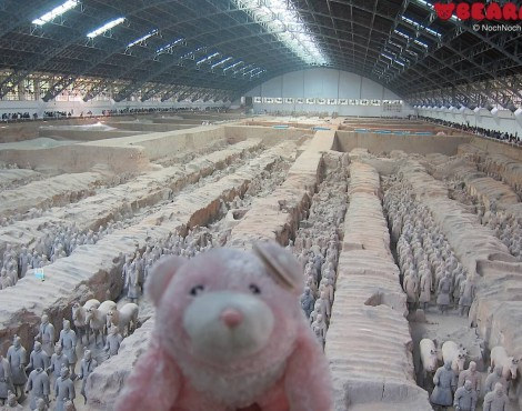 Clumsie with Terracotta Warriors