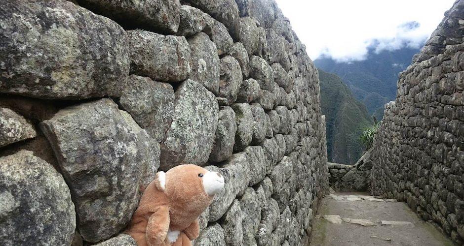 Proudie stuck in Macchu Picchu